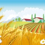 Illustration of wheat fields and rural home